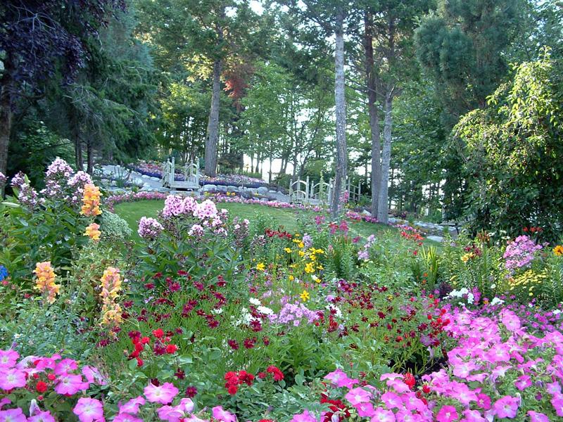bibler gardens flowers